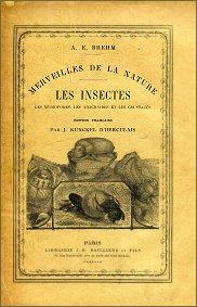 La publication du livre LES INSECTES en cd-rom !