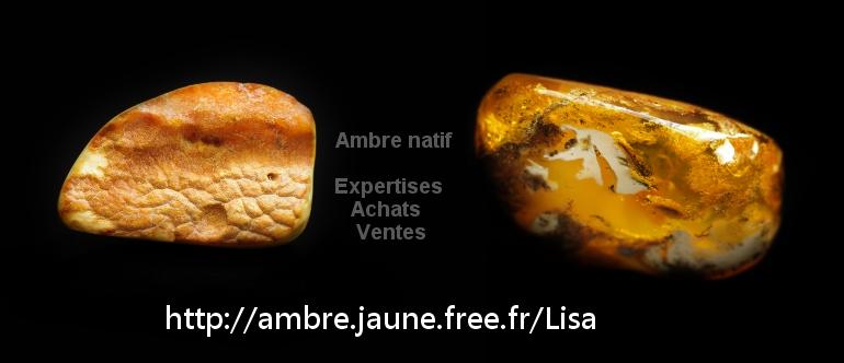 trésor d ambre