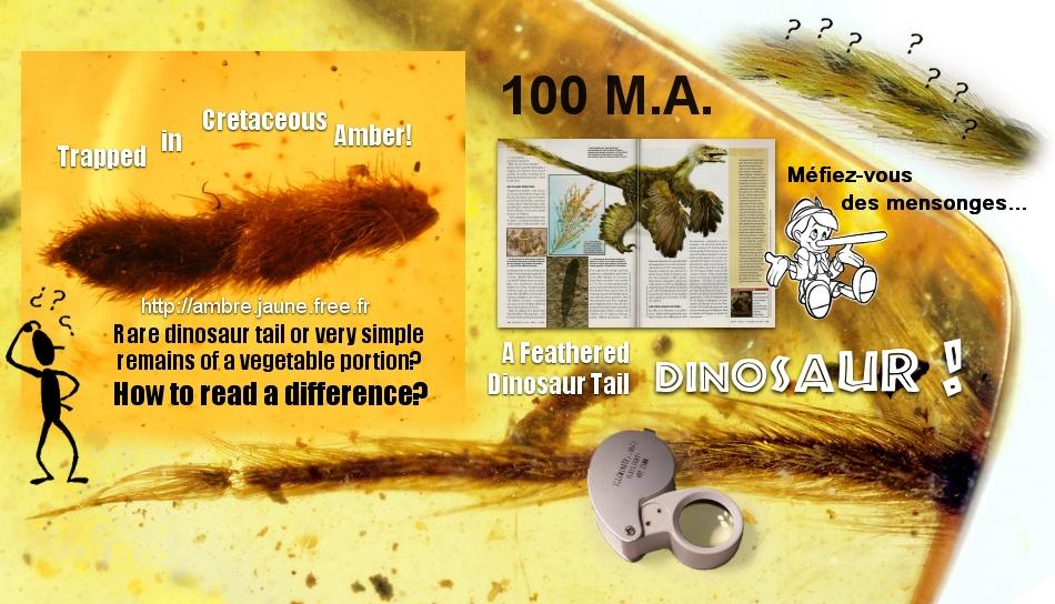 queue dinosaure ambre