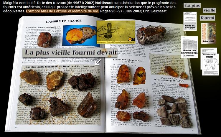 Un livre qui présente l'ambre et la plus vieille fourmi du monde !